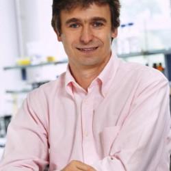 Dr. Norbert Bartetzko